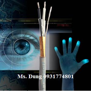 Cáp tín hiệu hệ thống âm thanh 14 AWG (2.5mm2)